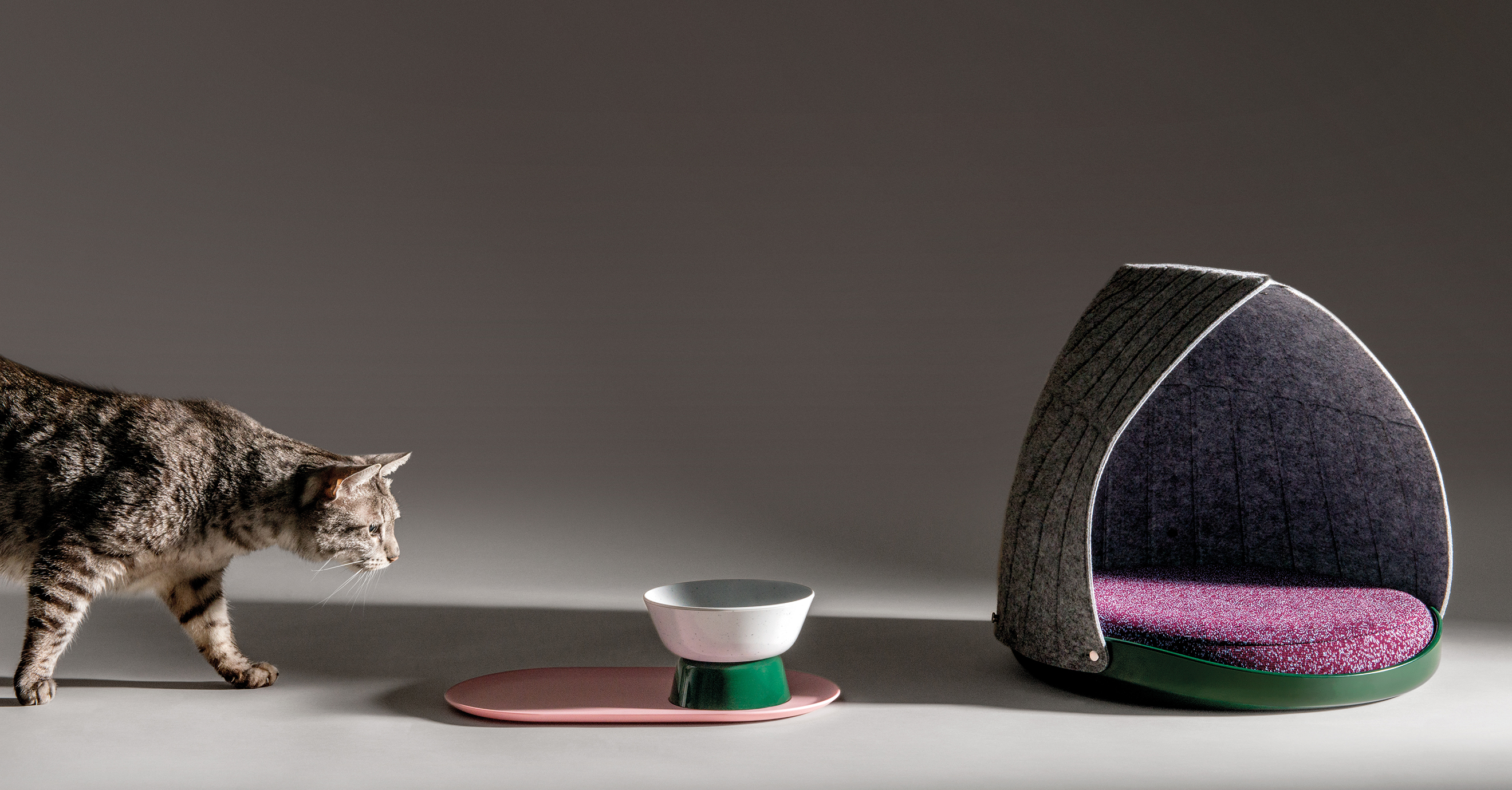 Cat Person collection launches